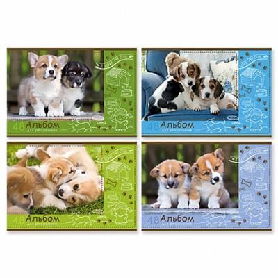 Альбом 48л А4 БиДжи спираль Любимый щенок 5375