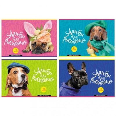 Альбом 12л А4 БиДжи Dog fashion на скобе 4 дизайна 7257