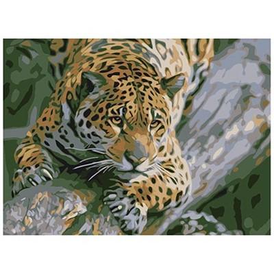 Живопись по номерам Рыжий кот 22*30см Гепард на ветке HS097