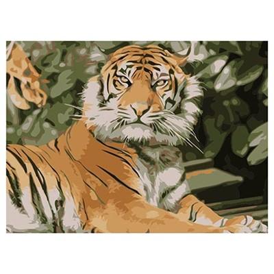 Живопись по номерам Рыжий кот 22*30см Тигр в джунглях HS103